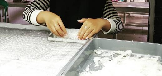 jasa cuci sarang walet di semarang dan jakarta